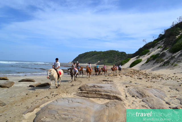 Cintsa South Africa  city pictures gallery : Horse trails in Cintsa, South Africa.