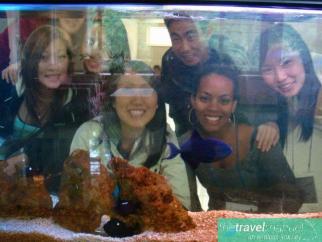 travel friendships