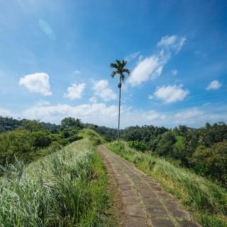 8 Tips to make (or break) Bali.