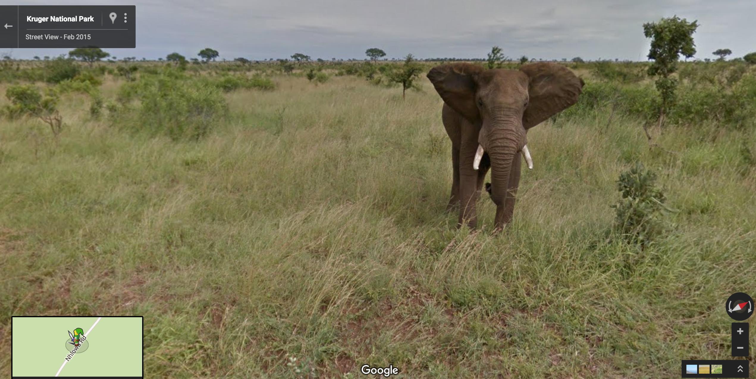 Google Maps Meets South Africa! #ExploreMzansi