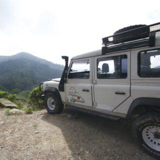Road Tripping Malaysia.