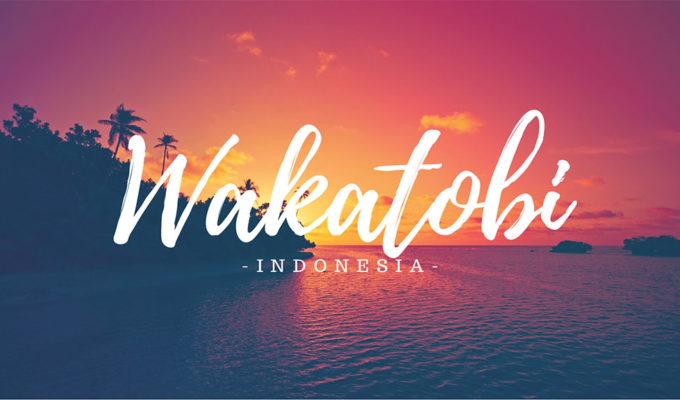 Wakatobi Feature Image