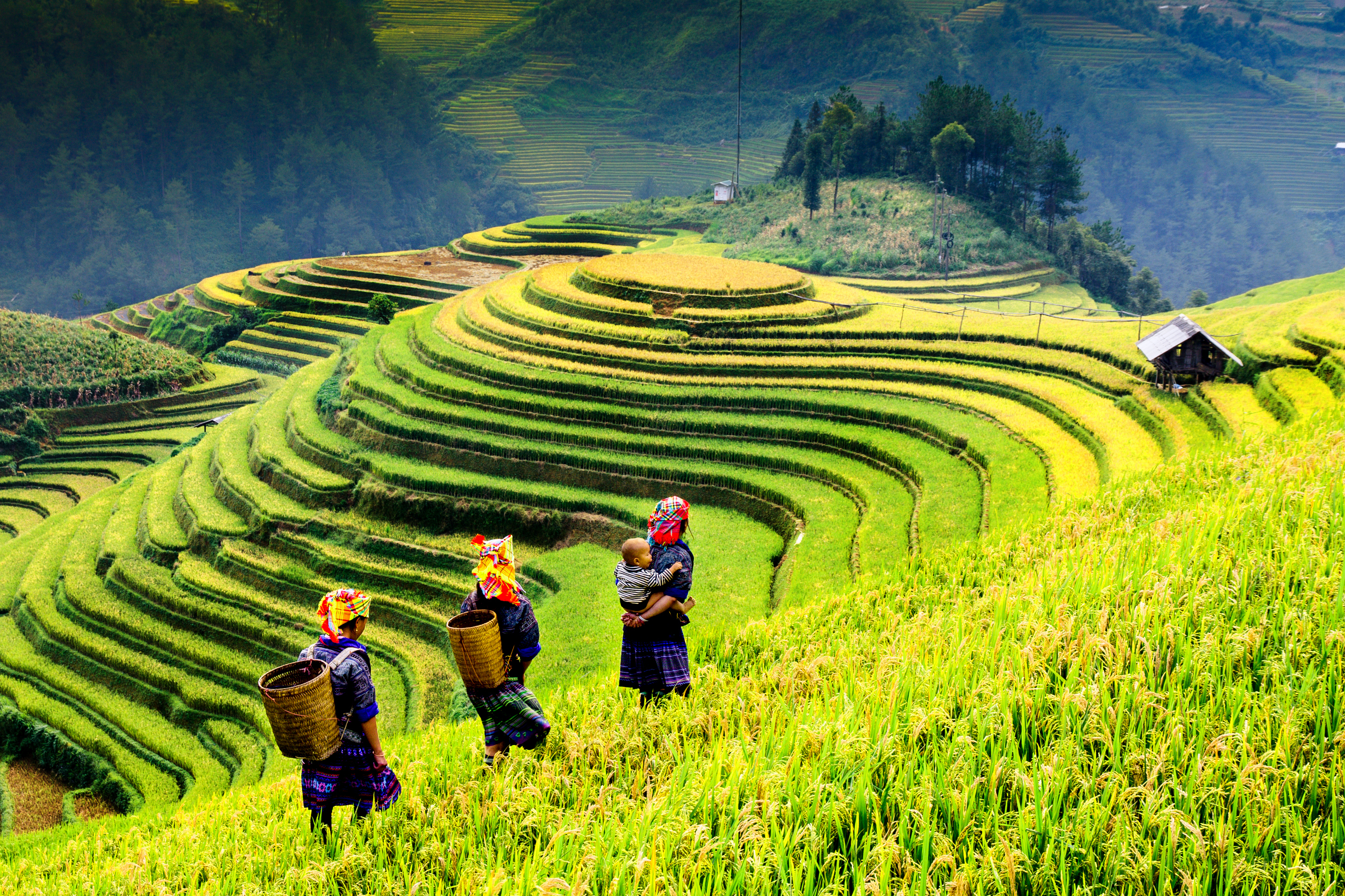 Top Places you can't miss in Vietnam.