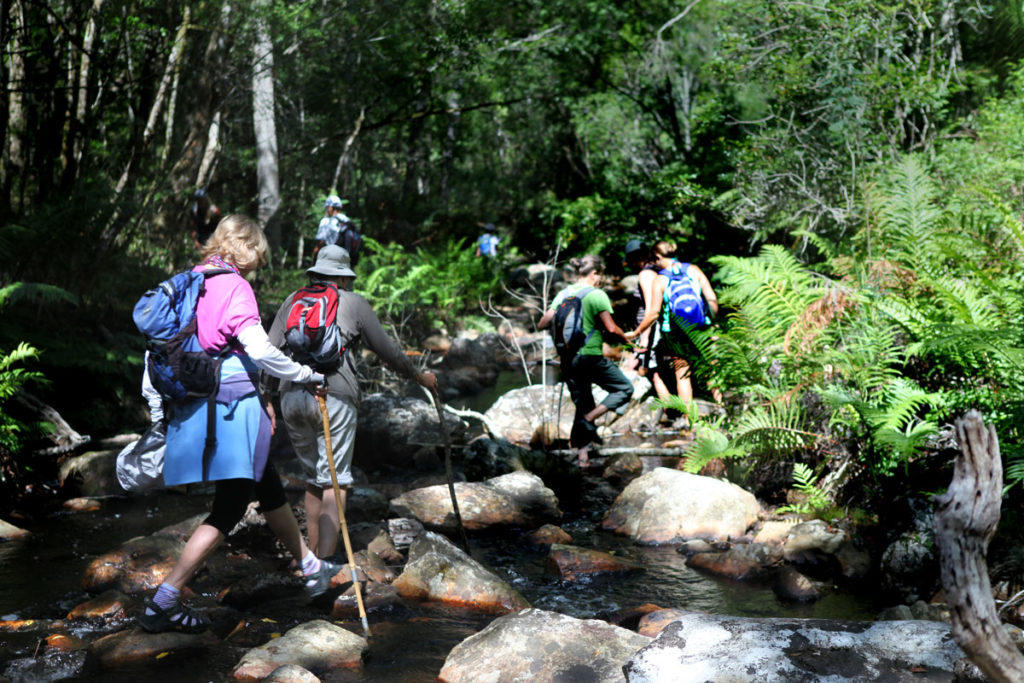 Getting ready for the Hi-Tec Garden Route Walking Festival.
