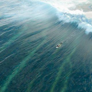 surfing maldives